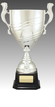 AD421 Italian metal cup on plastic base (365mm high) $95.00