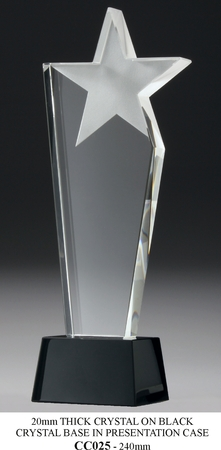 CC025 240mm high crystal with frosted star on black crystal base $138.00