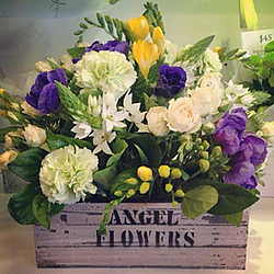 Get Well Flowers for Home and Hospitals Category Image