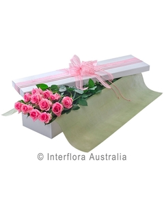 12_pink_rose_presentation_box_924532437.jpg