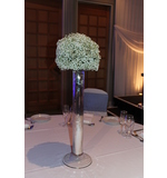 Gypsophila Dome Arranged on a Silver Stand