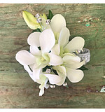 White orchid wrist corsage with diamantes