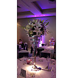 White & Lilac Chandelier Centre Piece