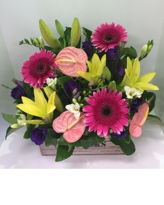 Bright%20crate%20arrangement%20$90.00.JPG