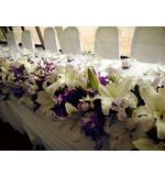 Lilac and White Hedge of Oriental Lillies, Freesias, Roses and Orchids