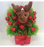 Rudolf Chocolate Box
