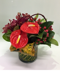 Tropical%20Dome%20Glass%20Vase%20Arr%20$55.JPG