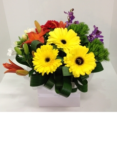 Vibrant Grouped Dome Arrangement