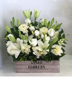 A White Crate Arrangement