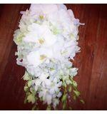 Phalaenopsis & dendrobium orchid teardrop in white