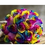 Rainbow Rose Posy