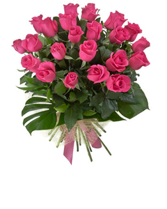 Two dozen pink rose bouquet