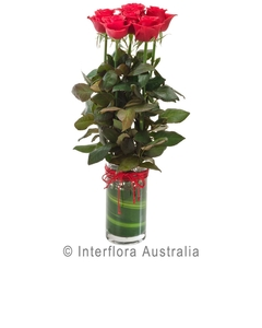 Red Roses, 6 Arranged in a Vase
