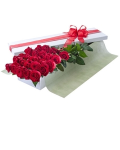 Two Dozen Red Rose Presentation Box