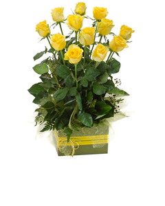 Dozen yellow roses in a box $105.00