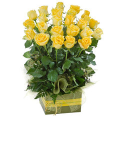 Two Dozen Yellow Roses in a Box