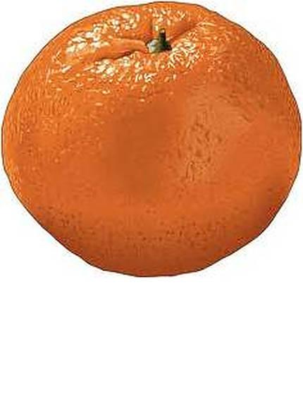 mandarincitrus-3.jpg