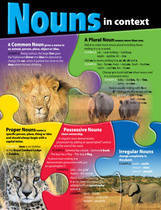 Nouns in Context Educational Chart
