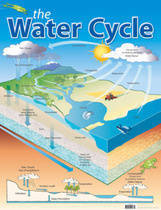 The Water Cycle Educational Chart
