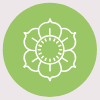 fresh-flowers-icon.png