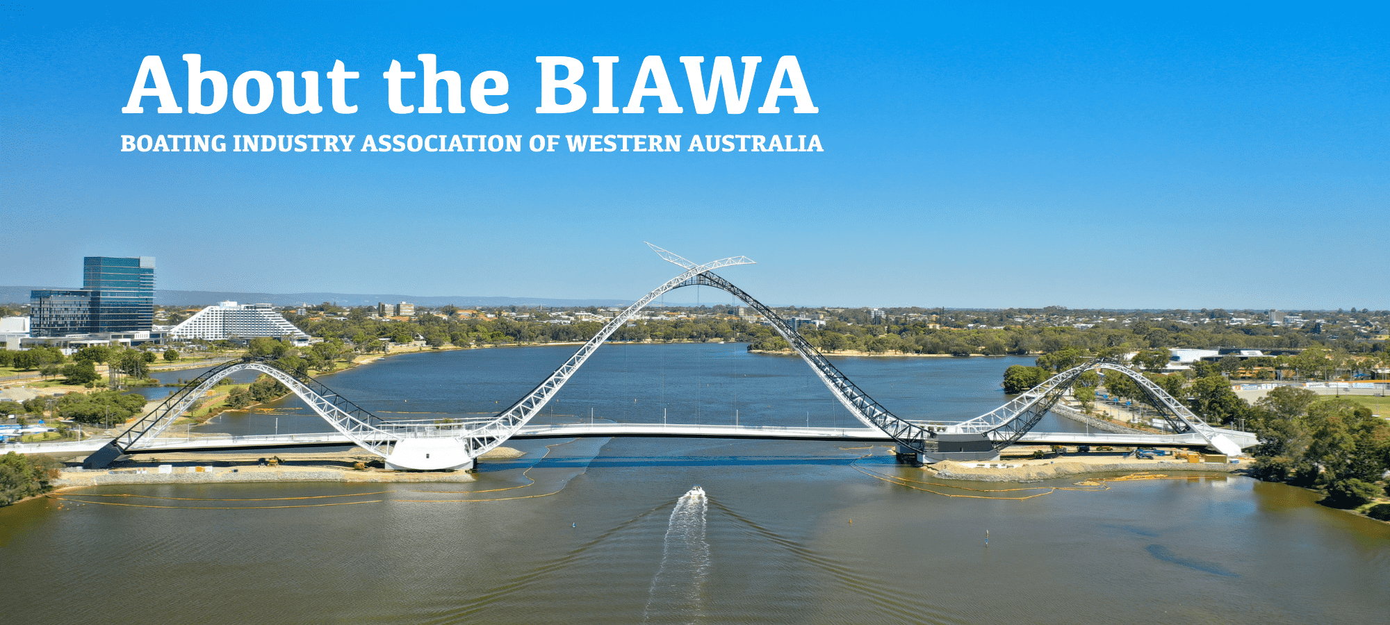 about-the-biawa.png