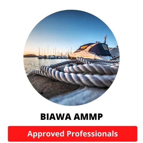 biawa-ammp-02.png