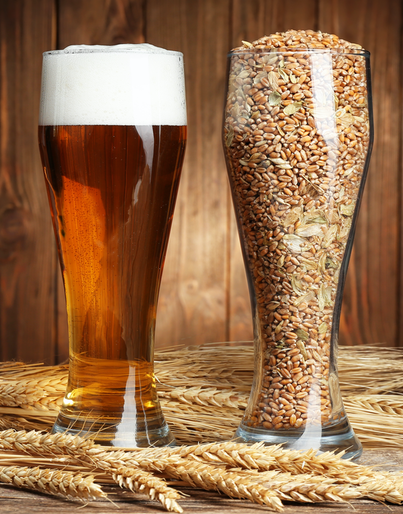 grains_plus_beer.png