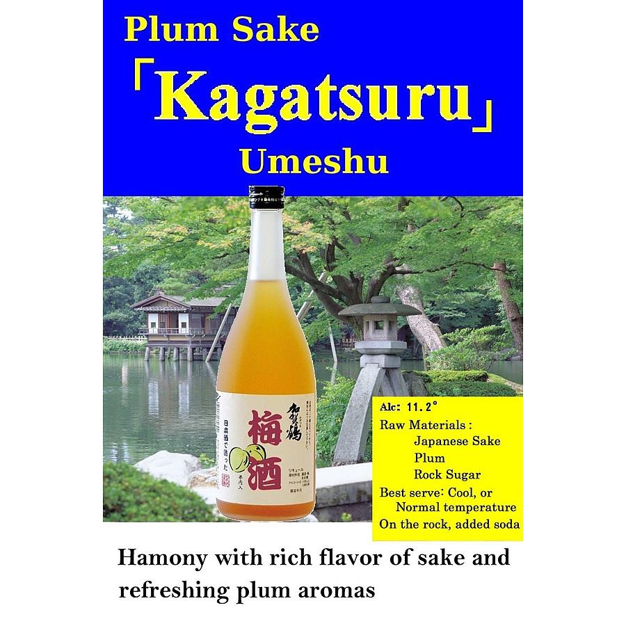 Yachiya Ume Plum Wine Japan 300ml - Image 1