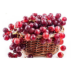 Organic and Preservative Free Reds image - click to shop
