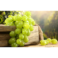 Organic and Preservative Free Whites image - click to shop