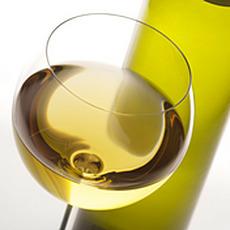 Sauvignon Blanc image - click to shop