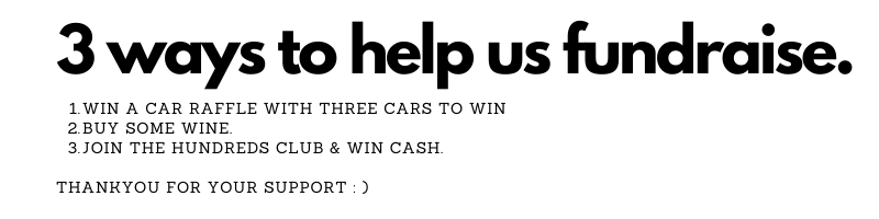 3_ways_to_help_us_fundraise_.png