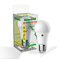 ReneSola LED Sensor Bulb 6.5W