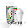 ReneSola LED Bulb GLS 12W