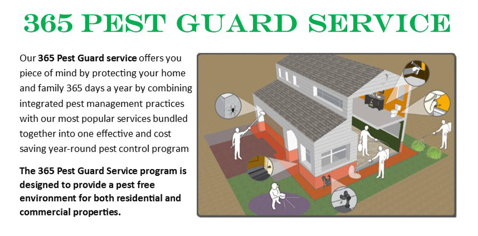 PEST FREE ALL YEAR ROUND!