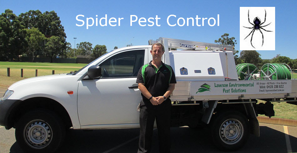 Call Lawson environmental pest solutions 0426 288 822