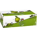 LITTLE GREEN CIDER CAN 24PK