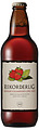 REKORDERLIG STRAWBERRY & LIME CIDER 500ML SGL