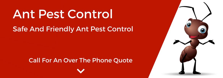 mtspestcontrol ants-pest-control2.jpg