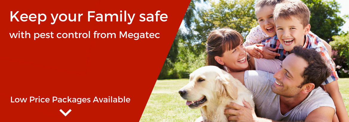 Megatec Pest Control Furnissdale Perth