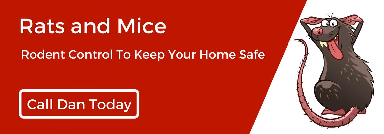 mtspestcontrol rodent-pest-control3.jpg