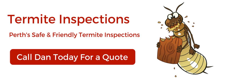 mtspestcontrol termites-pest-control7.jpg