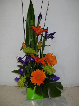 more on Tall Bright Box Arrangement