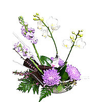 Flower Arrangements image - click to shop