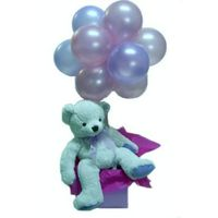 Baby Gifts - Teddy Bear & Balloon - A Touch of Class Florist Perth
