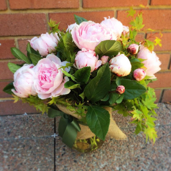 Fresh Peonies Perth - A Touch Of Class Florist