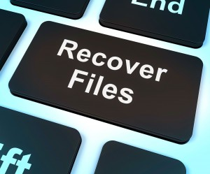 File Structure Data Recovery