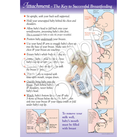 Wall Poster Attachment The Key To Successful Breastfeeding 1
