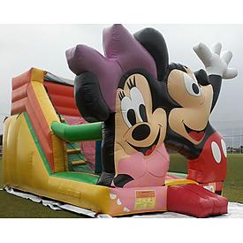 Giant Slides Category Image