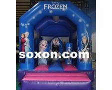 Small Frozen